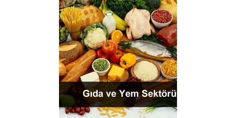 Gıda ve Yem Sektörü
